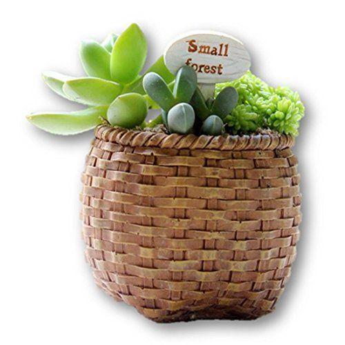 LightningStore Basket Succulent Plants Pot Microlandschaft Personalized Office House Balcony Landscape Pot Creative Decorative Flower Pots -- Want additional info? Click on the image.