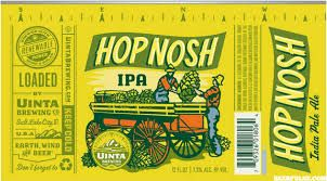 citra hops - Google Search