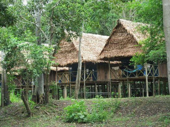 Muyuna Amazon Lodge and Expeditions - Great place to discover the jungle