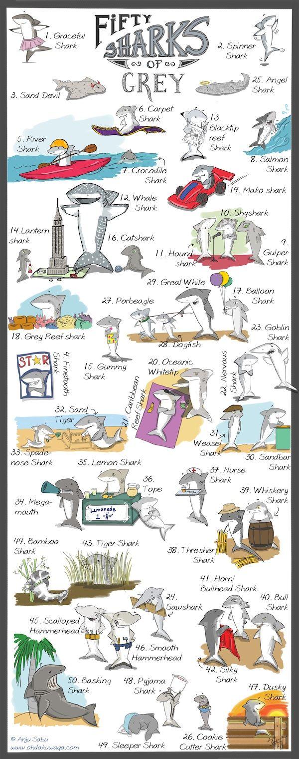 The Shark comics and cartoons: Fifty Sharks of Grey