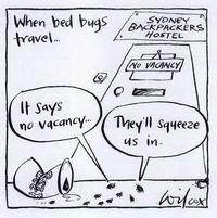 bed bugs hotel cartoon #Pests #PrecisePestControl