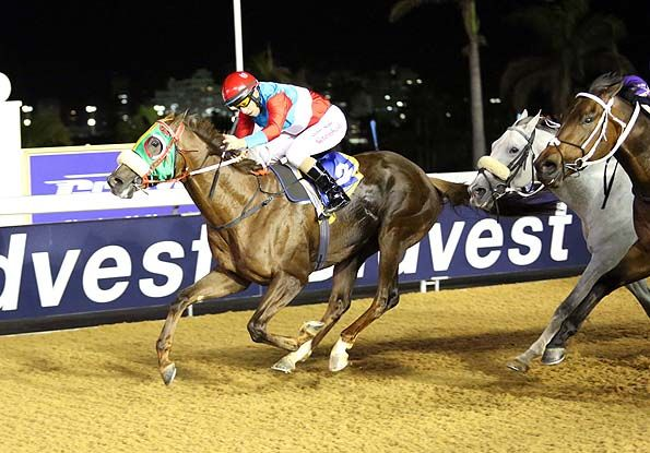 Summerhill Race Results: Greyville Polytrack 07/11/14 Race 3: MR 69 HANDICAP Open 1900m Winner: THIRTYTWO SQUADRON A P Arrow (USA) x Beauty Queen by Jallad (USA). Bred By: Summerhill Stud (Pty) Ltd   Owner: The Fire Racing Trust (Nom : Mr Alesh Naidoo) and Summerhill Stud Syndicate (Nom : Mr M J B Goss). Trainer: C Laird Jockey: Anton Marcus  Gold Circle Photo  www.summerhill.co.za
