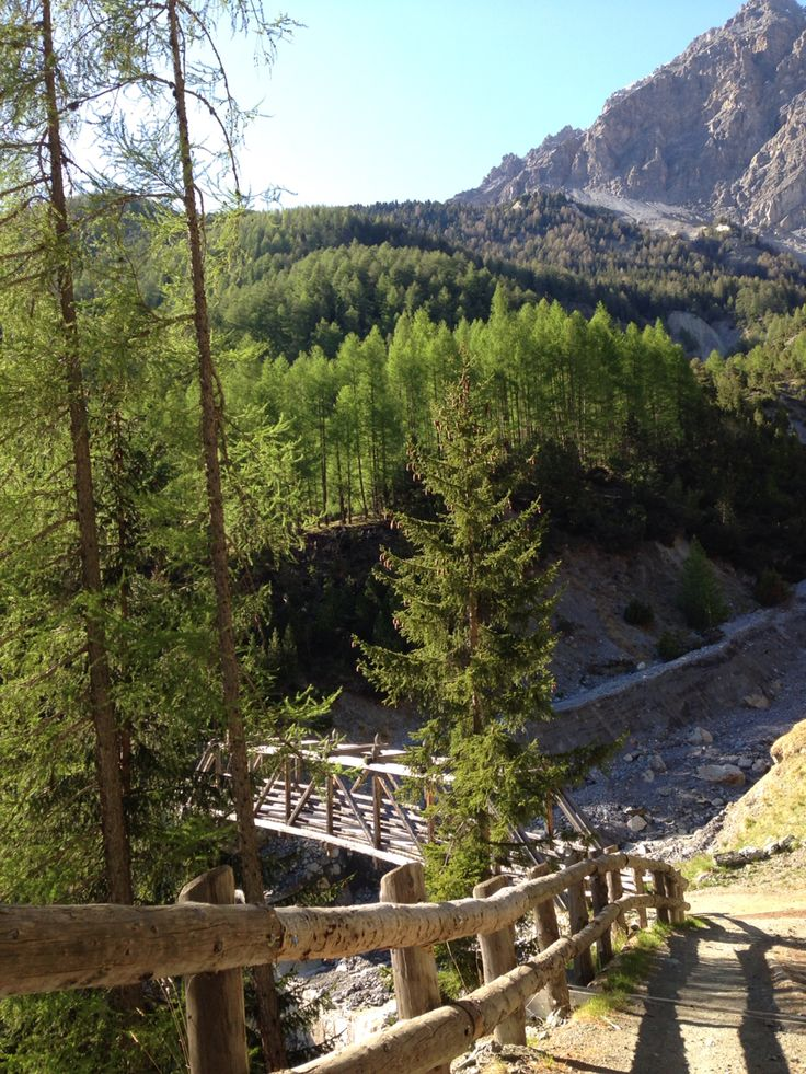 Bormio Valfurva passeggiata nel Parco Nazionale dello Stelvio !