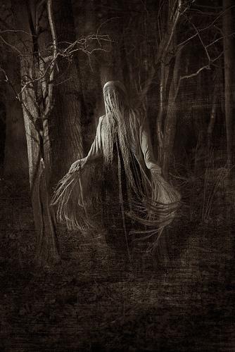 woodland haunt #gothic #horror #darkness