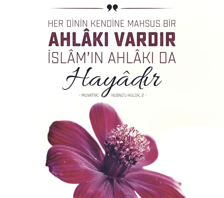 Her dinin kendine mahsus bir ahlakı vardır. İslamın ahlakı da hayâdır.   [Muvatta', Husnü'l-Hulük, 2]  #ahlak #islam #kuran #haya #iman #din #islam #türkiye #istanbul #eyüpsultan #ilmisuffa