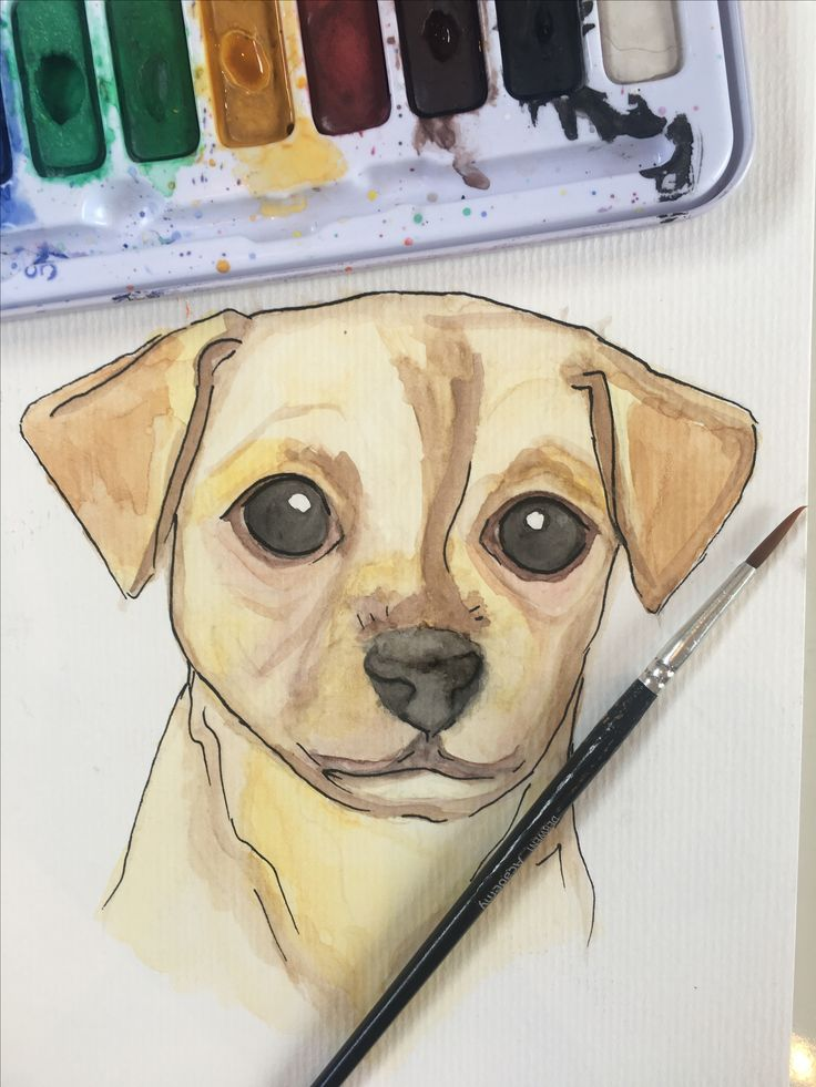 Josie the Puppy! Such a sweet and loved little girl! Custom watercolour pet portrait completed by Pretty Poppy by Sally - https://www.etsy.com/au/shop/PrettyPoppyBySally