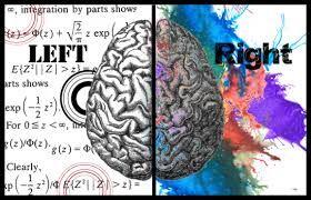 linker en rechter brain