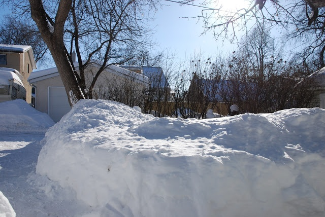 Oakview Cottage Winnipeg Manitoba Snow March 2013