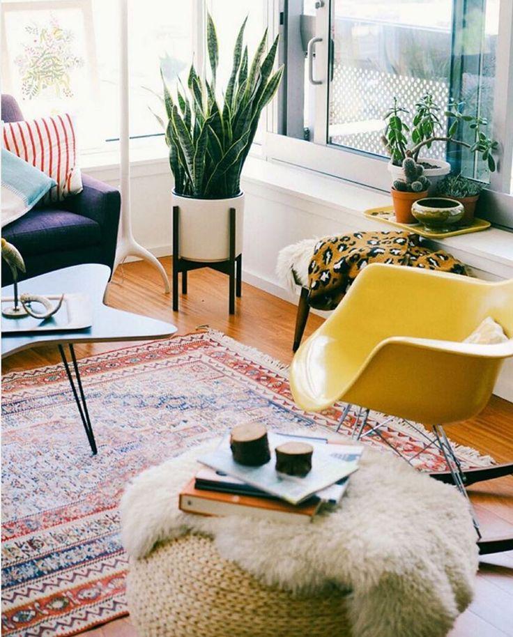 51 besten Zimmerpflanzen Bilder auf Pinterest Zimmerpflanzen - luftfeuchtigkeit schlafzimmer erhöhen