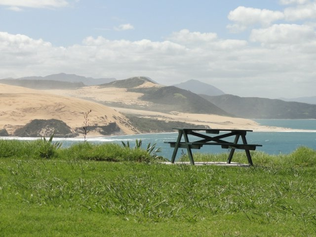 Picnic table near Omapere NZ - a great spot for lunch