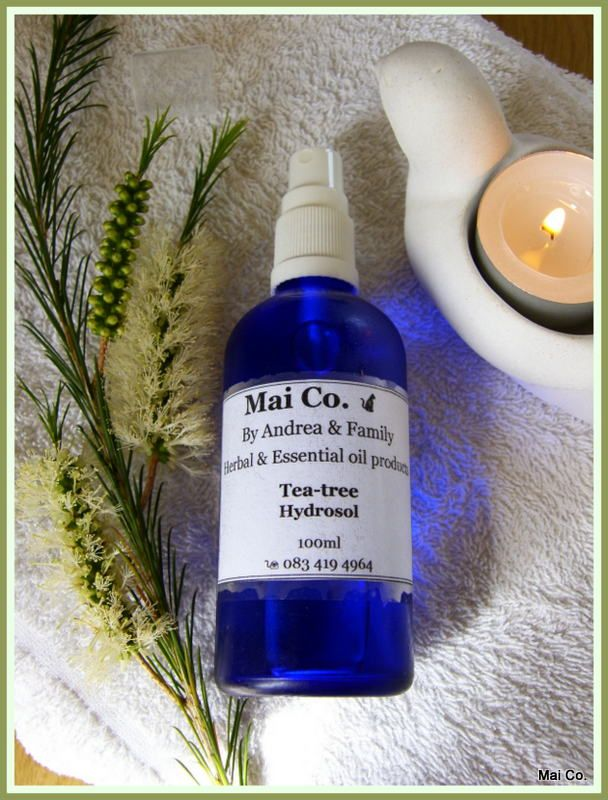 Tea-tree Hydrosol makes an effective hair rinse or spray to combat Lice and prevent reinfection! Safe, natural and chemical free! Gentle and safe for all ages!