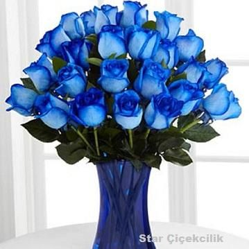 Mavi Güller 35 Adet   129,90 TL + KDV, Ürün Kodu : NzA 186, Resim Üzerine Tıkla Hemen Adrese Gönder, Aydınlı Mavi güller, Aydınlı Mavi Gül Fiyat, Aydınlı mavi gül gönder, aydınlı mavi gül siparişi, aydınlı mavi gül buket (0216) 384 7 038
