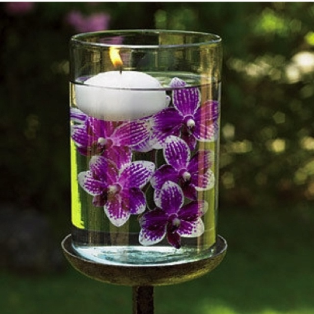 floating orchids....Karen this is your color !?
