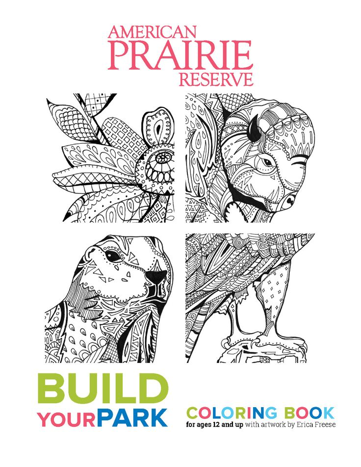 17 Best Images About BuildYourPark Adult Coloring Book On