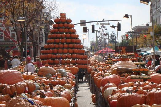 Hallowe'en Countdown - World's Best Pumpkin Festivals: Circleville Pumpkin Festival, Circleville, Ohio. Photo by www.pumpkinshow.com