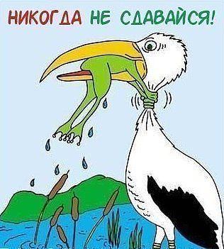 季诺季诺季诺 Гlקоﮎто хоקºωий ฯєλỗßеķ - Личные фото | OK.RU