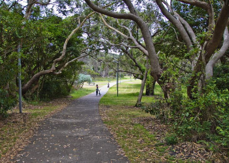 Fingal Bay Park - not only is it beautifully scenic, but it lends itself perfectly to a leisurely stroll, a jog or a bike ride! Also the home of the Fingal Bay parkrun, which is FREE and takes place weekly #fingalbay #portstephens