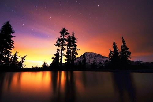Mt. Rainier at the Nisqually Vista, WashingtonState