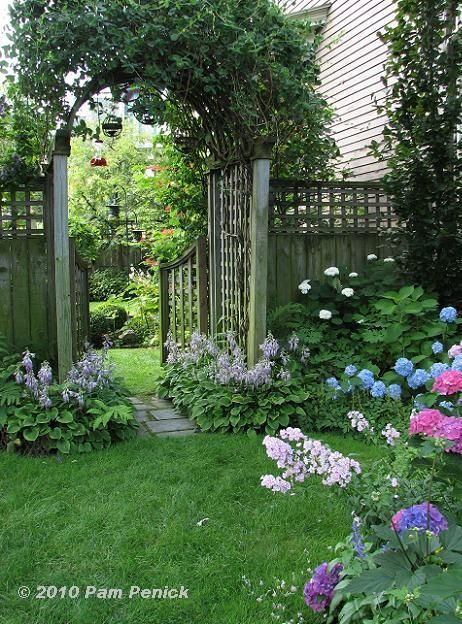 Gate with arch leading to a shady garden filled with hydrangea and hosta in bloom, among others.  The vine on the arch is amazingly large-it's unclear from the picture what it is, but it must be spectacular in bloom.