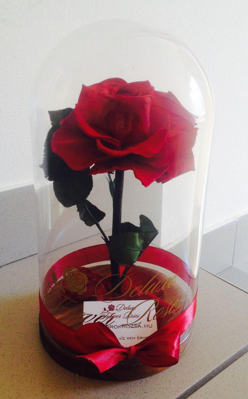 Rose Amor örök rózsa üvegbúrában:17.900Ft