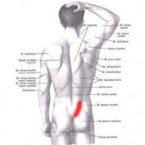 staw krzyzowo biodrowy bol