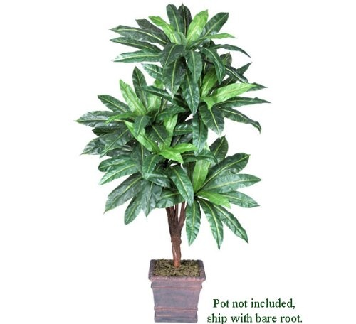 entracing palm tree type house plant. ONE Bird Nest Artificial Palm Tree Silk Plant  These beautiful trees add color and a touch of tropical taste to your home 41 best Plants images on Pinterest plants