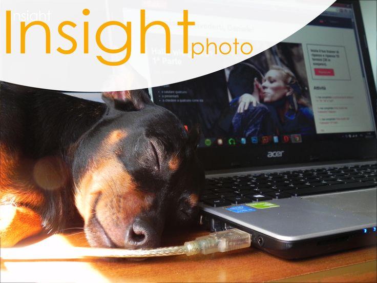 http://www.insight.altervista.org