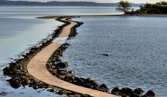 visit a tidal island---Bar island is a tidal island across from Bar Harbor on Mount Desert Island, Maine,