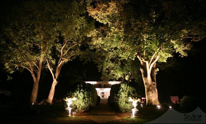 Tree Up Lighting At Entryway Uplights At Entrance