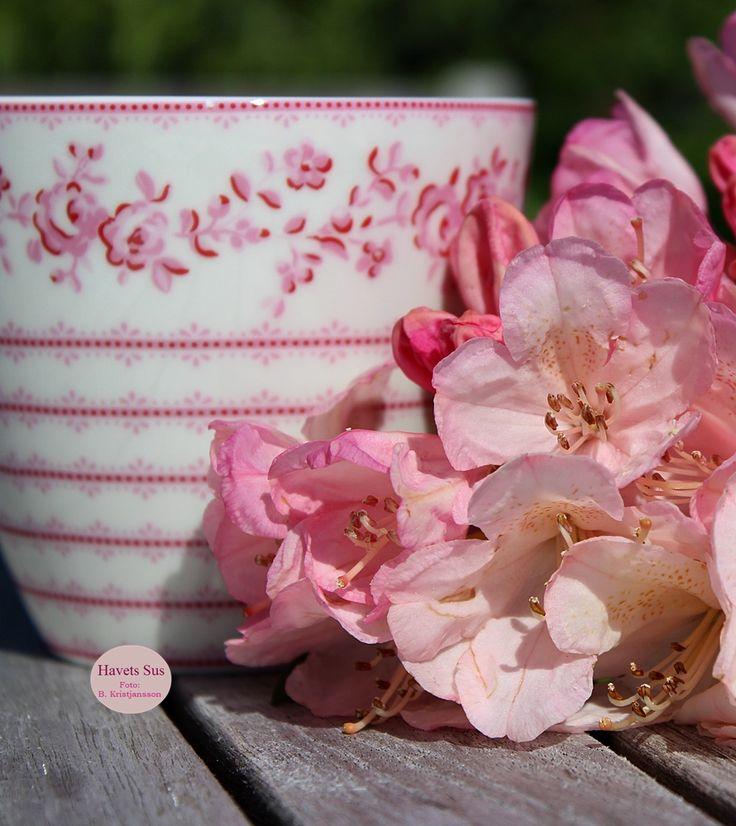 Greengate, Audrey Rasberry, Danishdesign, flowers, mygarden, blomster, Havets Sus