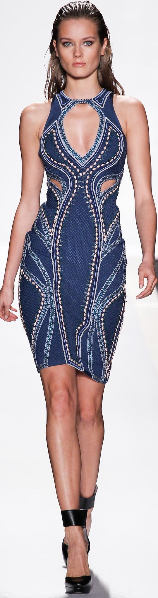 Herve Leger by Max Azria     Spring 2014     http://sulia.com/channel/fashion/f/870fba4d-b494-428f-b799-6abbeffb4db7/?source=pin&action=share&btn=small&form_factor=desktop&pinner=125430493