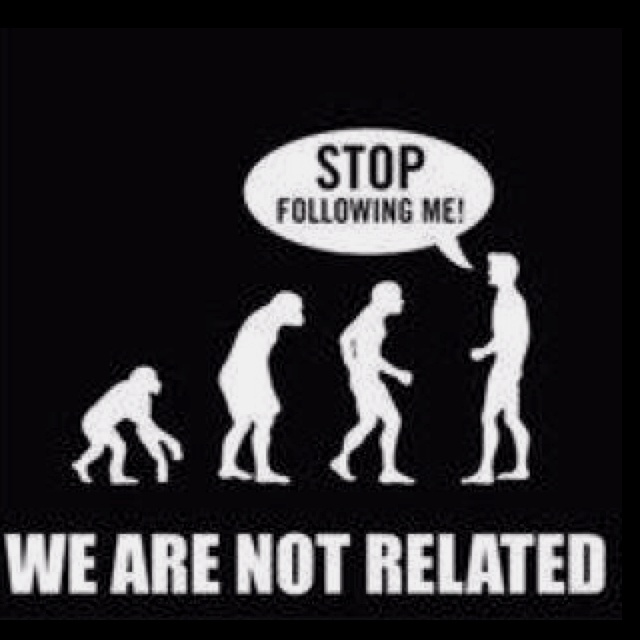 Haha.... Thought this was funny.Funny Things, Laugh, Quotes, Truths, So True, Funny Stuff, Humor, Evolution, Giggles