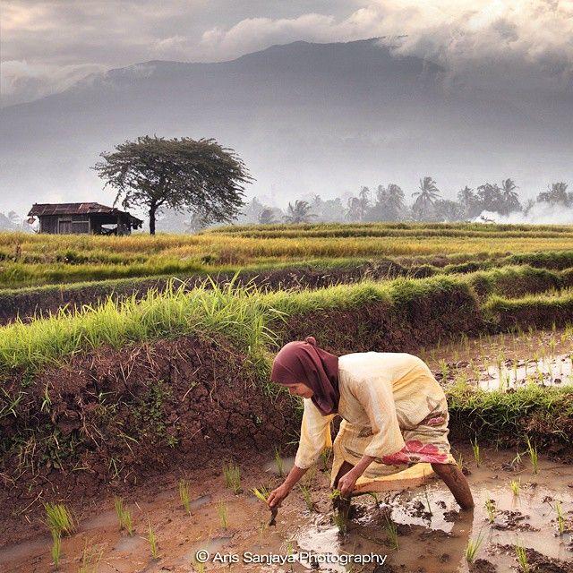 """Peaceful"" #padang #bukittinggi #batusangkar #indonesia #indonenesia_photography #worldunion #mtg9 #worldcaptures #gramoftheday #ig_captures #icamdaily #igrecommend #bd #instaparadise #ig_masterpiece #top_landscapes #stunning_shots #ig_snapshots #spotlight_shots #top_masters #allshots_ #gf_nusantara #gi_indonesia #igindonesia_ #wu_fonesia_photography #ahd_photo #mst_photooftheday #phototag_it #inscountries #igersmood"
