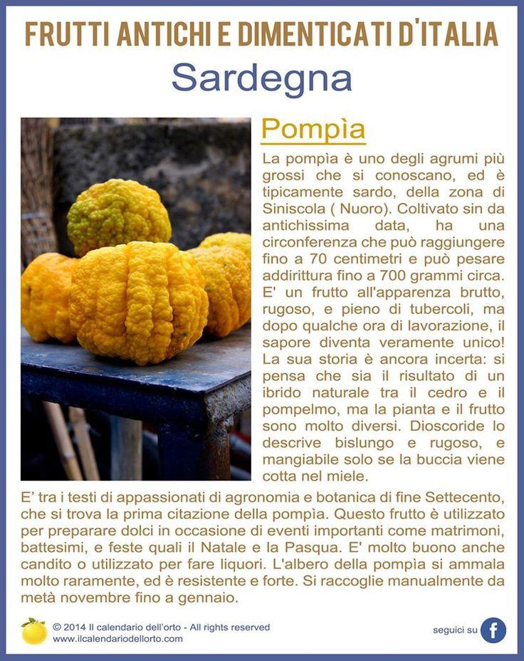 Sardegna: Pompìa