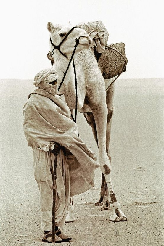 man with camel in Sahara desert