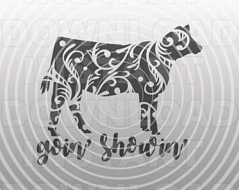 Cow SVG File,Show Heifer SVG,Goin Showin SVG,Stockshow svg,4-H svg -Vector Art Commercial/Personal Use- Cricut,Silhouette,Cameo,Vinyl Decal