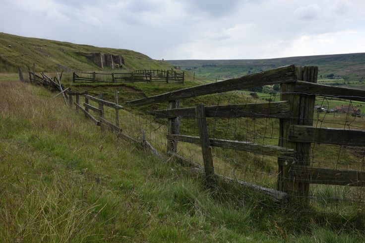 Rosedale view with fence