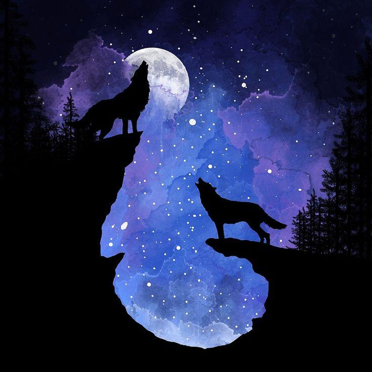 картинка волк рисунка луна был одет подобающий