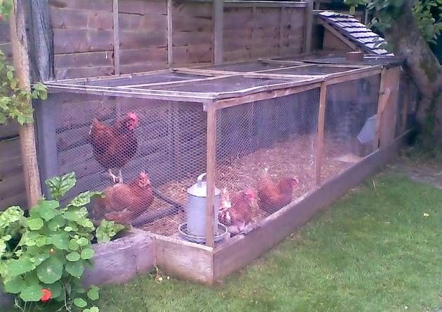 Enclosed chicken run has removable roof panels, access door, deep litter, self-feed hopper and drinker, raised house and day perch. The whole run area is on top of paving slabs to prevent rats tunnelling in and minimise cleaning