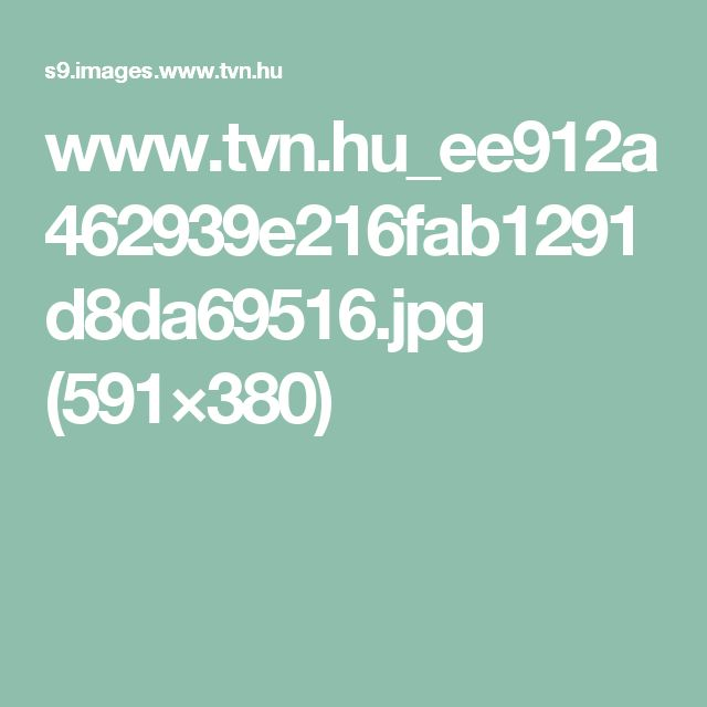 www.tvn.hu_ee912a462939e216fab1291d8da69516.jpg (591×380)