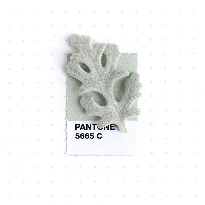 pantone-matching-system-everyday-objects-tiny-pms-project-inka-mathews-houston-texas-18