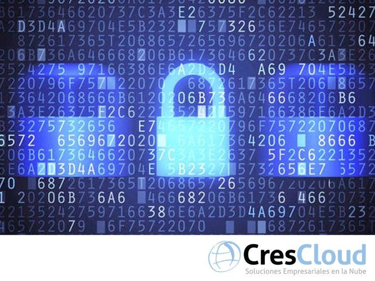 Cuidamos su información. TIPS PARA EMPRESARIOS. La Nube, es una herramienta de gran utilidad para la administración de su negocio. Sin embargo, aún existen empresas que dudan de la seguridad que pueden tener bajo este sistema. En CresCloud, a través de nuestro software Crescendo, garantizamos la seguridad en el manejo y almacenamiento de su información. Le invitamos a visitar nuestro sitio en internet www.crescloud.com, para obtener más información.