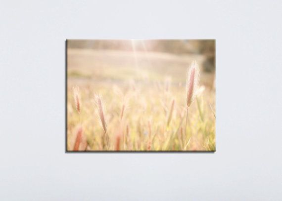 Nature Canvas Photography Beige Canvas Art Yellow by BreeMadden