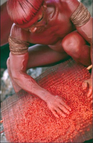 Índios - Cenas do dia-a-dia, c. 1975  Xingu, MT - VERMELHO-URUCUM