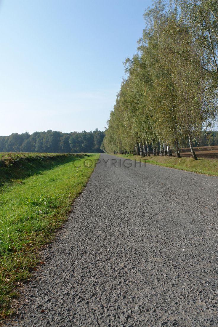 Gerade gefunden auf http://shop313566.fineartprint.de  Weg, Straße, Landschaft, Natur, Jahreszeiten