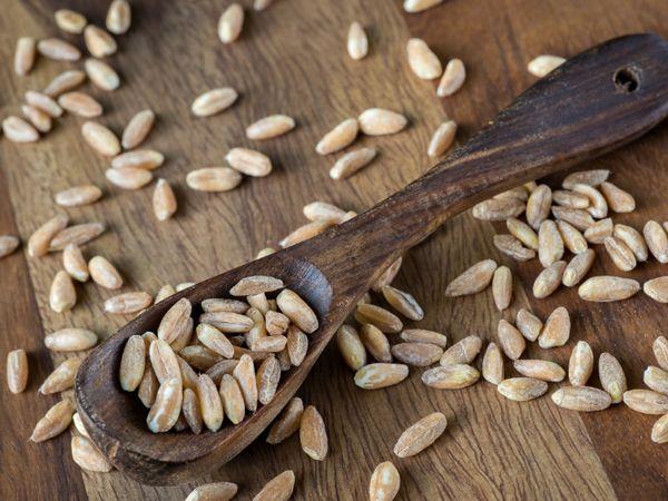 10 ballaststoffreiche Lebensmittel, die Ihre Verdauung ankurbeln | eatsmarter.de
