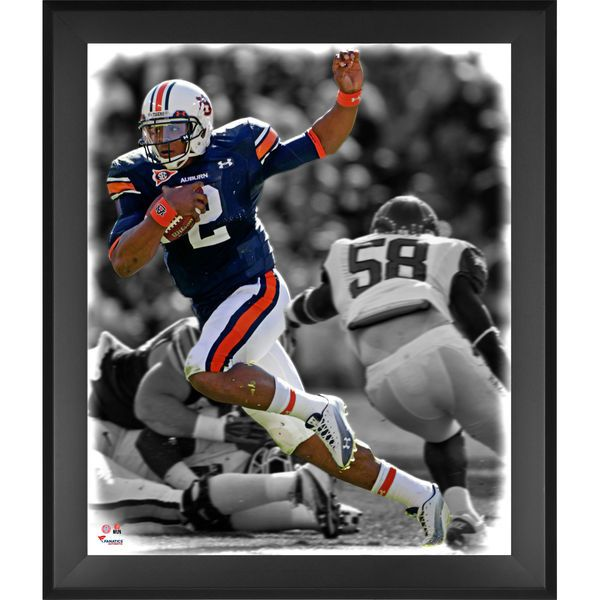 Cam Newton Auburn Tigers Fanatics Authentic Framed 20'' x 24'' In the Zone Photograph - $99.99