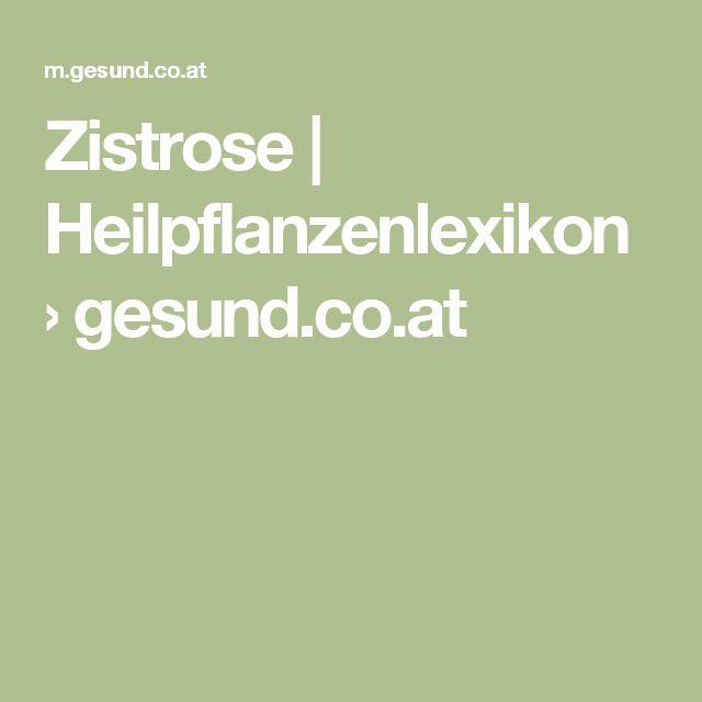 Zistrose | Heilpflanzenlexikon › gesund.co.at