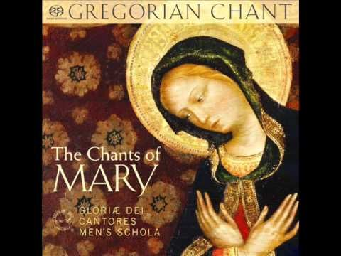 "Gregorian Chant - Salve Regina (Solemn tone) from ""The Chants of Mary"" Gloriae Dei Cantores Men's Schola 2012"