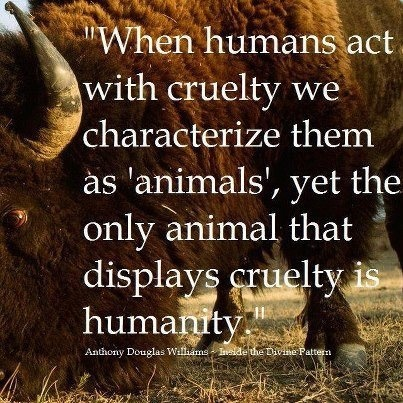 animal rights rational thought Brief summary of philosophy and animals alissa contemporary animal rights and animal welfare advocates often make use of he further thought that the.